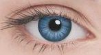 Линзы Adria Glamorous Color 2 шт blue