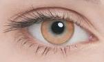 Линзы Adria Color 2шт 1 Tone brown темные