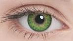 Линзы Adria Color 2шт 3 Tone: green