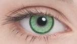 Линзы Adria Elegant Color 2 шт green