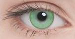 Линзы Adria Color 2шт 1 Tone green