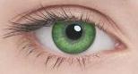Линзы Adria Color 2шт 2 Tone green зеленый