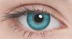 Линзы Adria Color 2шт 2 Tone: turquoise